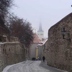 Gourmet City Guide Tallinn