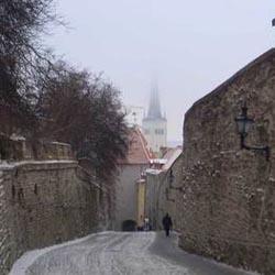 Gourmet City Guide Tallinn