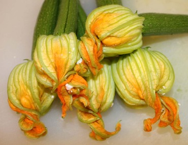 Courgetteflowers2