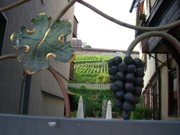 Swabian_wine